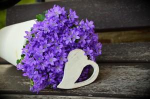 flowerpot-1372450_960_720